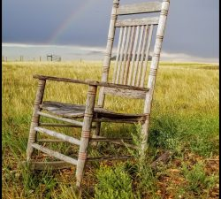 tpg the chair